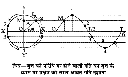 RBSE Solutions for Class 11 Physics Chapter 8 दोलन गति 10
