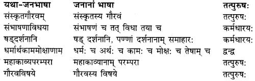 RBSE Solutions for Class 9 Sanskrit सरसा Chapter 4 संस्कृतगौरवम् 4