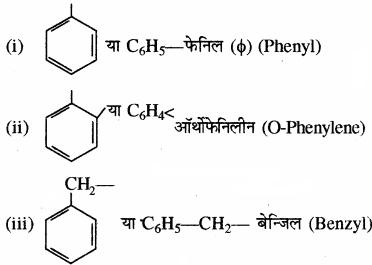 RBSE Solutions for Class 11 Chemistry Chapter 12 कार्बनिक रसायन: कुछ मूल सिद्धान्त और तकनीकें img 102