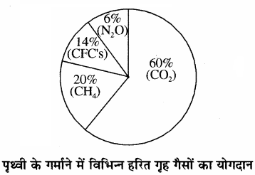 RBSE Solutions for Class 11 Chemistry Chapter 14 पर्यावरणीय रसायन img 12