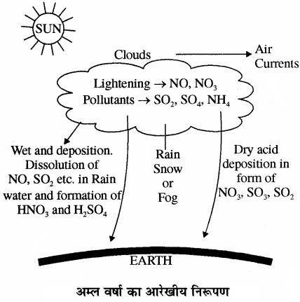 RBSE Solutions for Class 11 Chemistry Chapter 14 पर्यावरणीय रसायन img 13