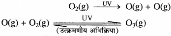 RBSE Solutions for Class 11 Chemistry Chapter 14 पर्यावरणीय रसायन img 17
