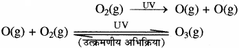 RBSE Solutions for Class 11 Chemistry Chapter 14 पर्यावरणीय रसायन img 2