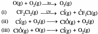 RBSE Solutions for Class 11 Chemistry Chapter 14 पर्यावरणीय रसायन img 24