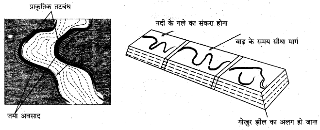 RBSE Solutions for Class 11 Physical Geography Chapter 10 अपरदन के कारक 5