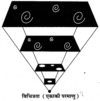 RBSE Solutions for Class 11 Physical Geography Chapter 2 पृथ्वी एक ग्रह के रूप में 1