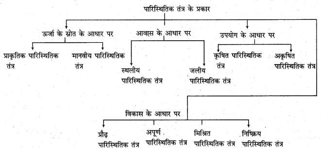 RBSE Solutions for Class 11 Physical Geography Chapter 22 पारिस्थितिकीय तंत्र की संकल्पना 1