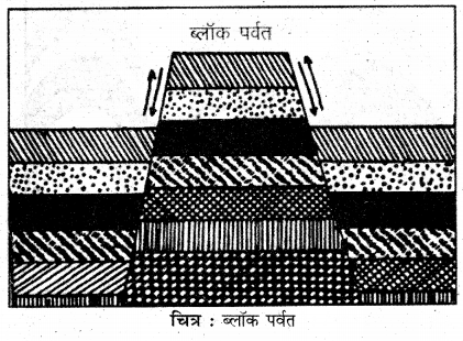 RBSE Solutions for Class 11 Physical Geography Chapter 8 प्रमुख स्थलाकृति स्वरूप 5