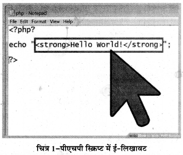 RBSE Solutions for Class 11 Computer Science Chapter 7 पी. एच. पी. image - 1