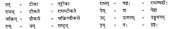RBSE Class 10 Sanskrit व्याकरणम् सन्धिः image 12
