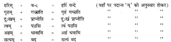 RBSE Class 10 Sanskrit व्याकरणम् सन्धिः image 15