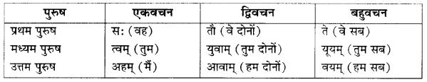 RBSE Class 10 Sanskrit व्याकरणम् अनुवाद-कार्यम् image 2