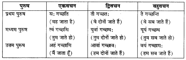 RBSE Class 10 Sanskrit व्याकरणम् अनुवाद-कार्यम् image 3