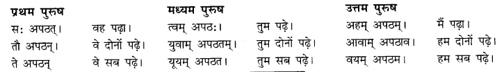 RBSE Class 10 Sanskrit व्याकरणम् अनुवाद-कार्यम् image 6