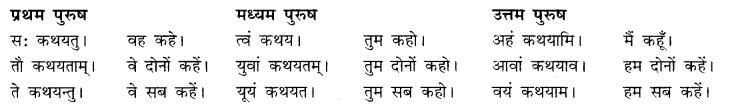 RBSE Class 10 Sanskrit व्याकरणम् अनुवाद-कार्यम् image 8