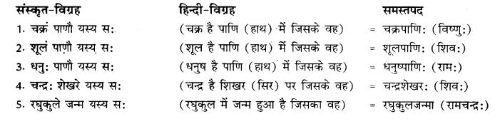 RBSE Class 10 Sanskrit व्याकरणम् समासः image 13