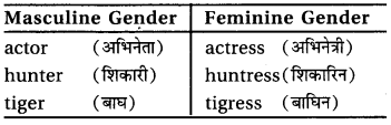 RBSE Class 6 English Vocabulary Gender image 3