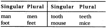 RBSE Class 6 English Vocabulary Number image 9