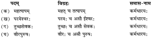 RBSE Solutions for Class 10 Sanskrit स्पन्दन Chapter 11 स्वदेशं कथं रक्षेयम्