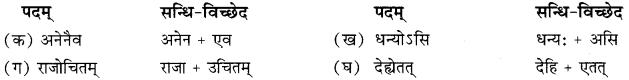 RBSE Solutions for Class 10 Sanskrit स्पन्दन Chapter 11 स्वदेशं कथं रक्षेयम् image 2