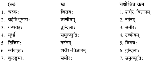 RBSE Solutions for Class 10 Sanskrit स्पन्दन Chapter 12 मरुसौन्दर्यम्