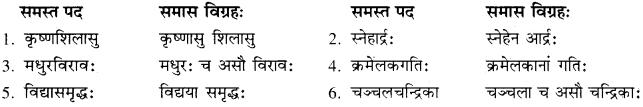 RBSE Solutions for Class 10 Sanskrit स्पन्दन Chapter 12 मरुसौन्दर्यम् image 10