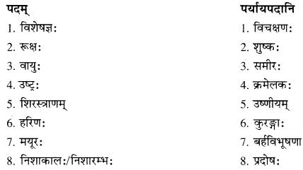 RBSE Solutions for Class 10 Sanskrit स्पन्दन Chapter 12 मरुसौन्दर्यम् image 2