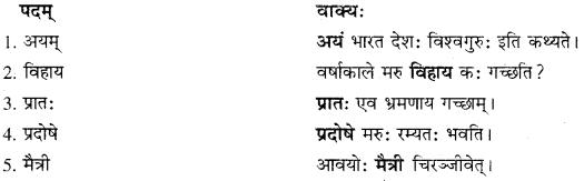 RBSE Solutions for Class 10 Sanskrit स्पन्दन Chapter 12 मरुसौन्दर्यम् image 5