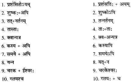 RBSE Solutions for Class 10 Sanskrit स्पन्दन Chapter 12 मरुसौन्दर्यम् image 7