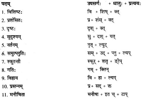 RBSE Solutions for Class 10 Sanskrit स्पन्दन Chapter 12 मरुसौन्दर्यम् image 8