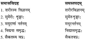 RBSE Solutions for Class 10 Sanskrit स्पन्दन Chapter 12 मरुसौन्दर्यम् image 9
