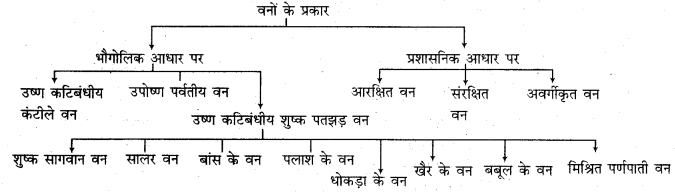 RBSE Solutions for Class 11 Indian Geography Chapter 13 राजस्थान जलवायु, वनस्पति व मृदा 2