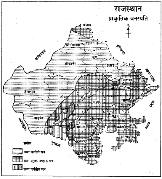 RBSE Solutions for Class 11 Indian Geography Chapter 13 राजस्थान जलवायु, वनस्पति व मृदा 3