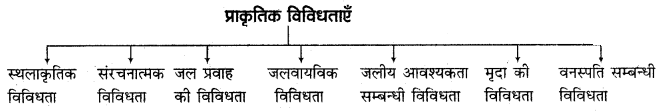 RBSE Solutions for Class 11 Indian Geography Chapter 2 भारत की विविधताओं में एकता