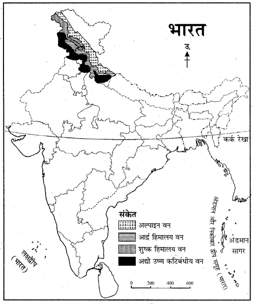 RBSE Solutions for Class 11 Indian Geography Chapter 8 भारत की प्राकृतिक वनस्पति 6