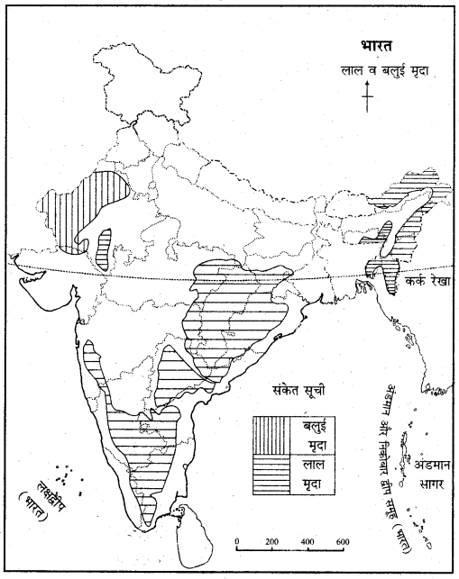 RBSE Solutions for Class 11 Indian Geography Chapter 9 भारत की मृदा 1