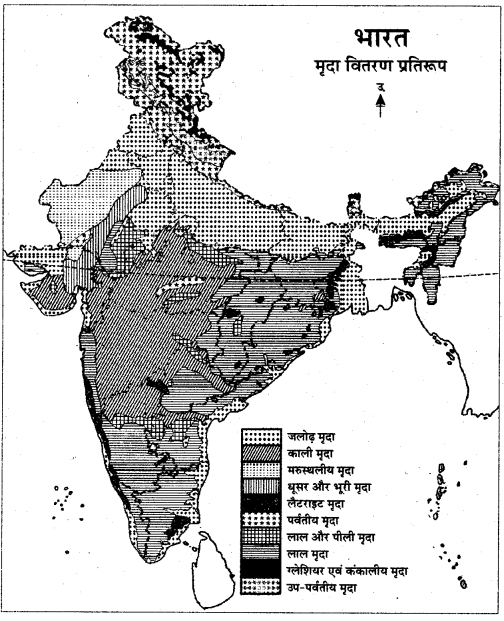 RBSE Solutions for Class 11 Indian Geography Chapter 9 भारत की मृदा 3