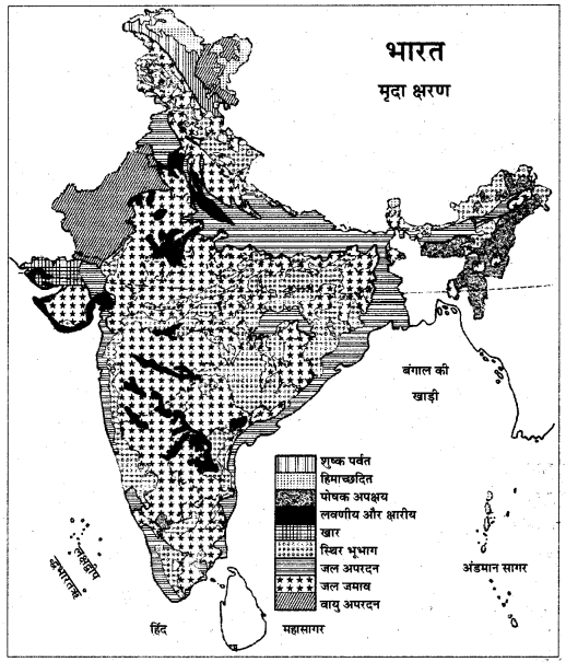 RBSE Solutions for Class 11 Indian Geography Chapter 9 भारत की मृदा 4