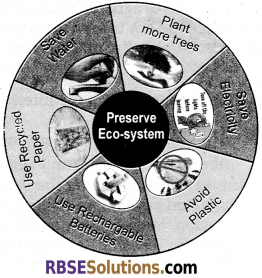RBSE Solutions for Class 12 English Rainbow Chapter 8 A Journey to the End of the Earth img 1