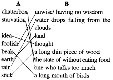 RBSE Solutions for Class 5 English Chapter 11 A Talkative Tortoise image 2
