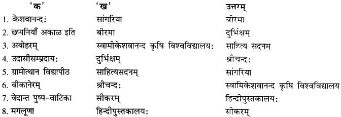 RBSE Solutions for Class 10 Sanskrit स्पन्दन Chapter 8 कर्मयोगी स्वामी केशवानन्दः