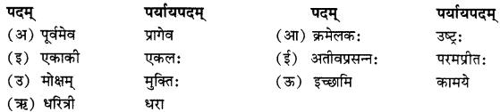 RBSE Solutions forClass 10 Sanskrit स्पन्दन Chapter 8 कर्मयोगी स्वामी केशवानन्दः image 2