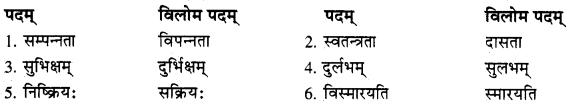 RBSE Solutions forClass 10 Sanskrit स्पन्दन Chapter 8 कर्मयोगी स्वामी केशवानन्दः image 3