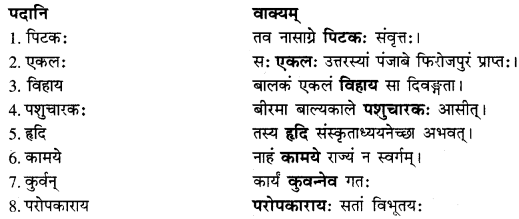 RBSE Solutions forClass 10 Sanskrit स्पन्दन Chapter 8 कर्मयोगी स्वामी केशवानन्दः image 4