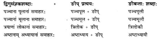 Rajasthan Board RBSE Class 10 Sanskrit व्याकरणम् प्रत्ययः image 23