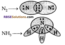 RBSE Solutions for Class 10 Science Chapter 8 Carbon and its Compounds image - 24