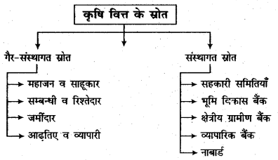 RBSE Solutions for Class 11 Economics Chapter 17 कृषिगत विकास 2