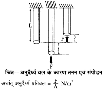 RBSE Solutions for Class 11 Physics Chapter 10 स्थूल पदार्थों के गुण 5