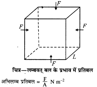 RBSE Solutions for Class 11 Physics Chapter 10 स्थूल पदार्थों के गुण 6