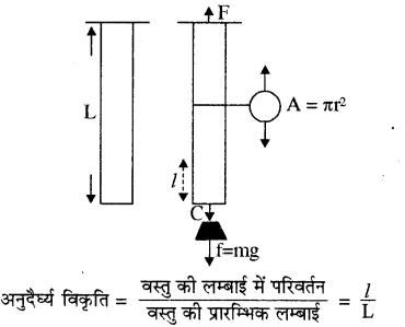 RBSE Solutions for Class 11 Physics Chapter 10 स्थूल पदार्थों के गुण 9